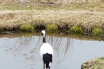 Akan International Crane Centre, Kushiro, Japan