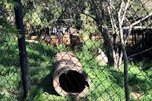 Rockhampton Zoo, Rockhampton, Australia