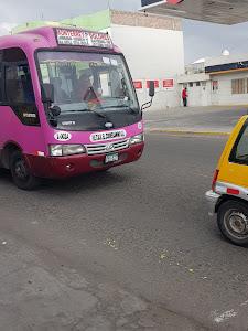 Grifo San Fernando REPSOL 6