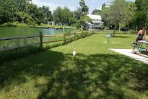 Hunter Springs Park, Crystal River, United States