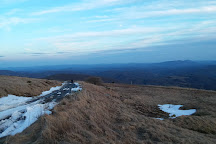 Whitetop Mountain, Mouth of Wilson, United States