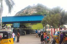 Palani, Palani, India