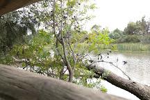 Cussen Park, Tatura, Australia