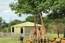 Africa Alive!, Lowestoft, United Kingdom