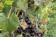 Prairie Fire Winery & Vineyard, Paxico, United States
