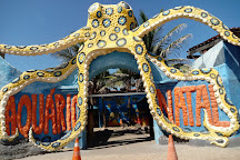 Aquario Natal, Extremoz, Brazil