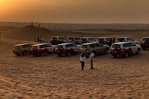 Dubai Desert Conservation Reserve, Emirate of Dubai, United Arab Emirates