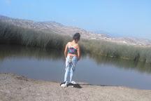 Wetlands of Ventanilla, Callao, Peru