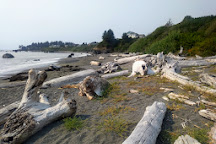 McVay Rock State Recreation Site, Brookings, United States