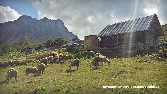 Montenegro Eco Adventures