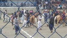 Shahi Polo Ground gilgit