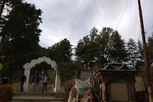 Chauli Ki Jali, Mukteshwar, India