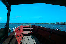 Commewijne River, Paramaribo, Suriname