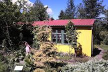 Golubienski Botanical Garden, Golubie, Poland