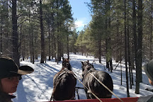 Historic Hitchin' Post Stables, Flagstaff, United States