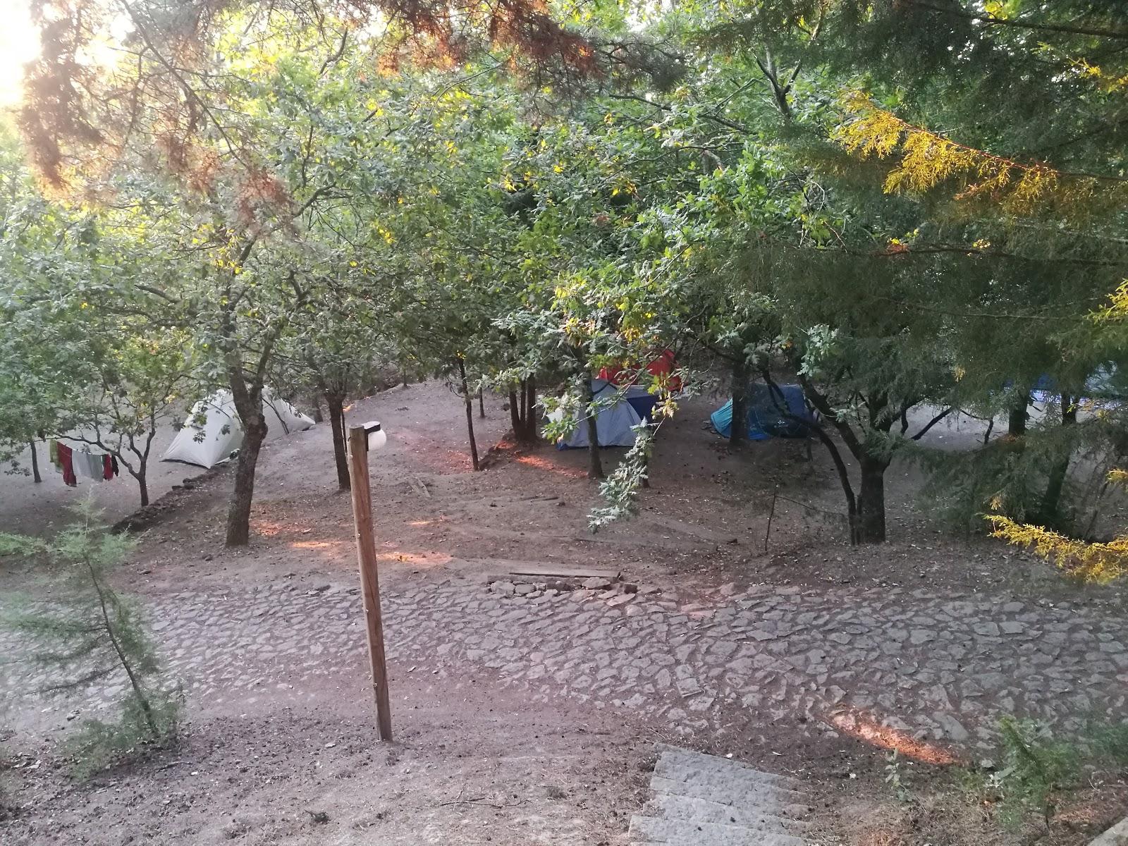 BioParque - Parque Florestal do Pisão