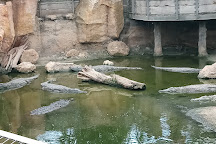 La Ferme aux Crocodiles, Pierrelatte, France