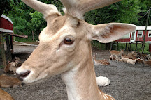 Smoky Mountain Deer Farm & Exotic Petting Zoo, Sevierville, United States