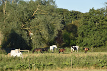Valley Farm Equestrian Leisure, Wickham Market, United Kingdom
