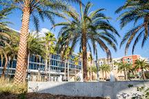 Addition Financial Arena, Orlando, United States