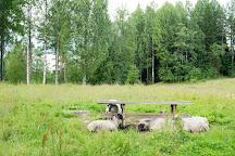 Seitsemisen Kansallispuisto, Ylojarvi, Finland