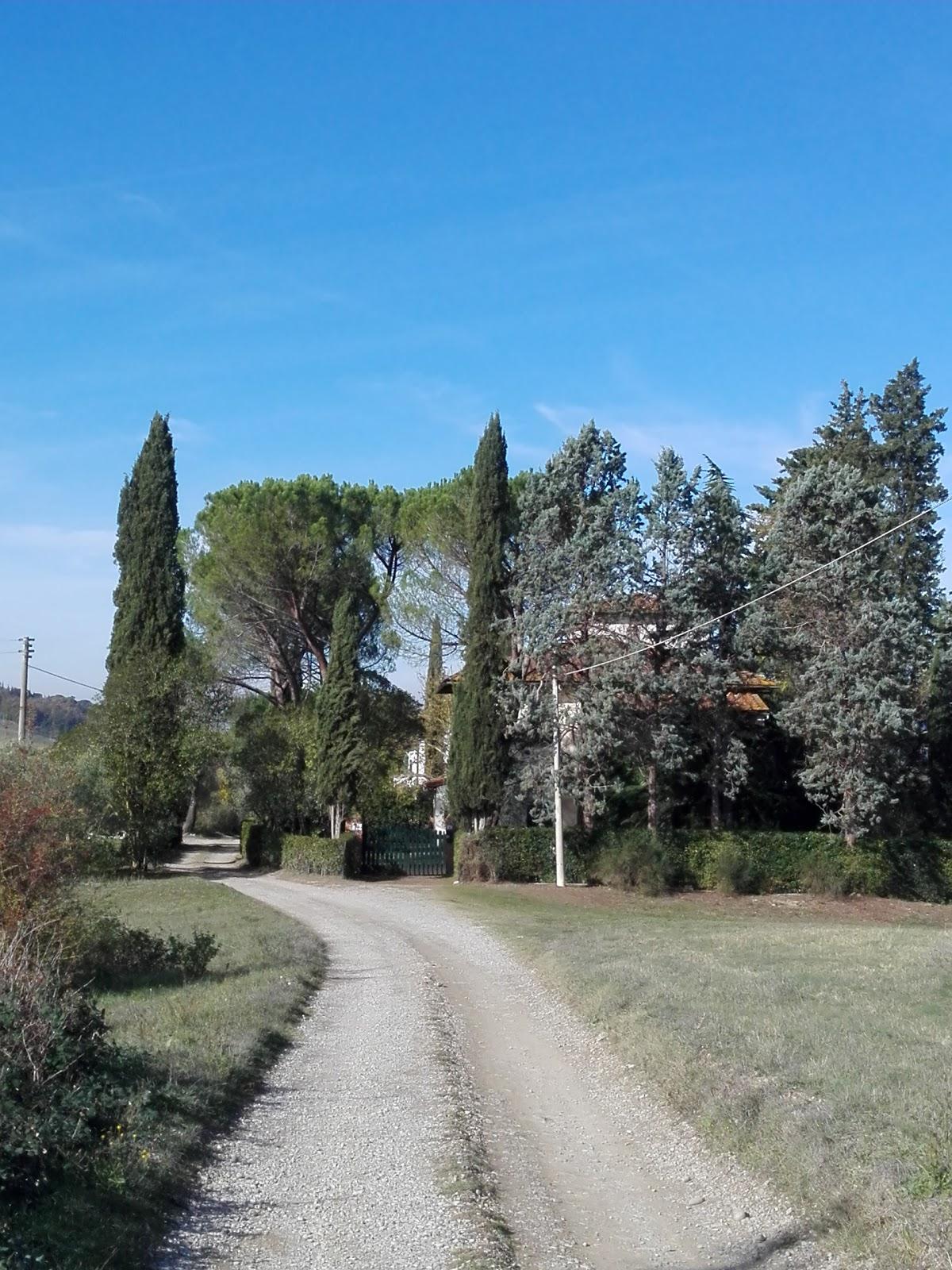 San Vincenzo a Torri