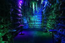 MindTrap Escape Room, Murrieta, United States