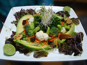 Shaman Restaurant Vegan Raw 2