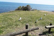 Mornington Pier, Mornington, Australia