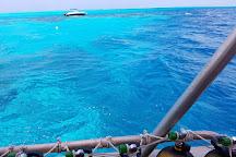 TOPDIVE Bora Bora, Vaitape, French Polynesia