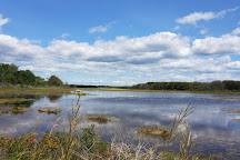 Wells Reserve at Laudholm, Wells, United States