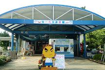 Saitama Aquarium, Hanyu, Japan