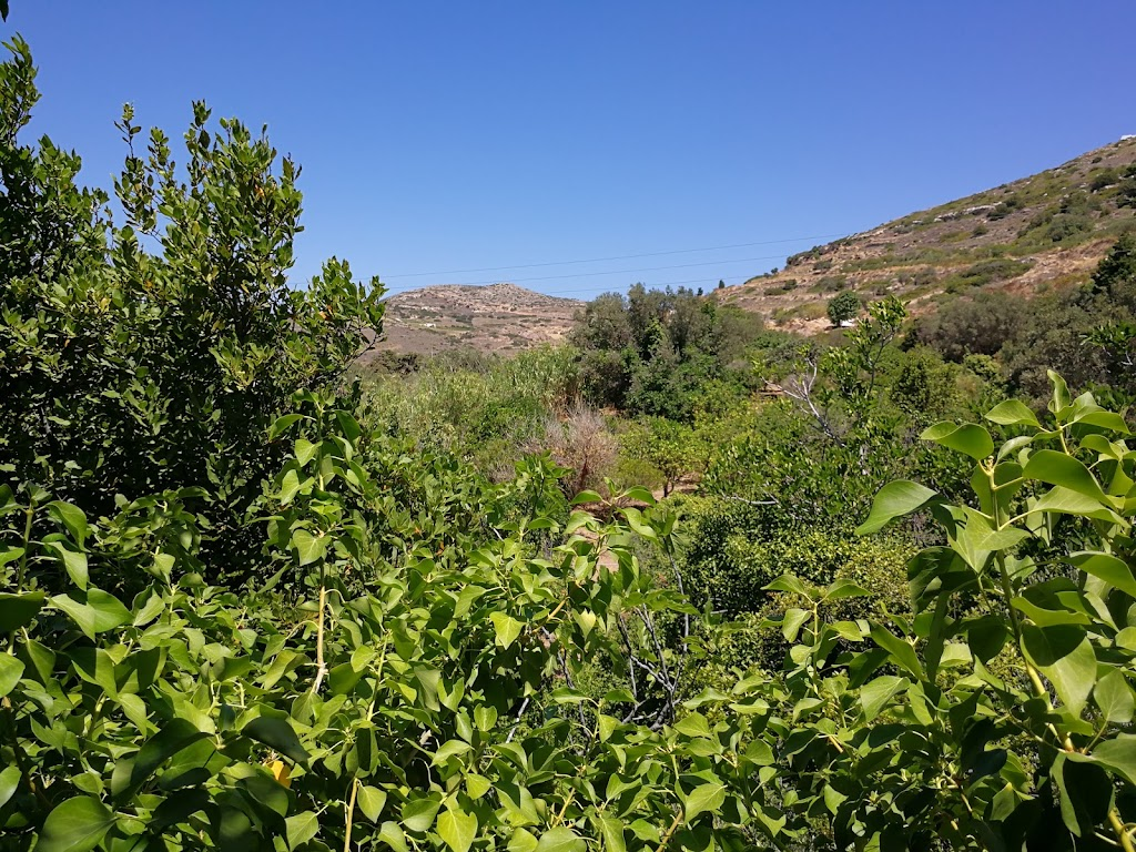 Κοιλάδα Πεταλούδων, Πάρος — Επαρ.Οδ. Παροικιάς-Πούντας, τηλέφωνο 2284  091211, άνοιγμα ώρες