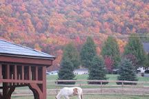 Royal Horseshoe Farm, Front Royal, United States