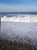 Пляж СКК Знание в Адлере
