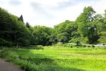 Hitsujiyama Park, Chichibu, Japan