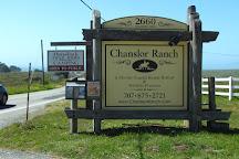 Chanslor Ranch, Bodega Bay, United States