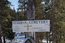 Roslyn Cemetery, Roslyn, United States