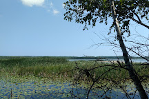 Kangaroo Lake Nature Preserve, Baileys Harbor, United States