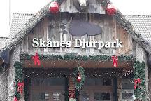 Skanes Djurpark, Hoor, Sweden