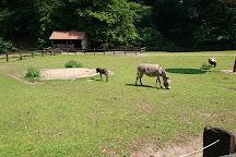 Heimat-Tierpark Olderdissen, Bielefeld, Germany