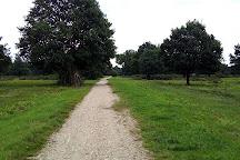 Wahner Heide, Troisdorf, Germany