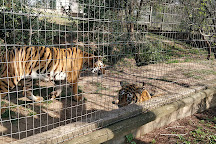 Natal Zoological Gardens, Cato Ridge, South Africa