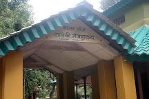Bison Lodge Museum, Pachmarhi, India