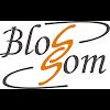 Blossom, улица Карла Либкнехта на фото Иркутска