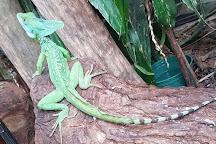 Arenal Eco Zoo, El Castillo, Costa Rica