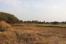 Vellode Bird Sanctuary, Erode, India