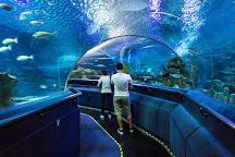 Aquaria, Kuala Lumpur, Malaysia