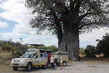 Bluecrane Safaris Namibia, Windhoek, Namibia
