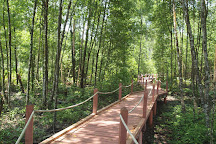 Matang Mangrove Forest Reserve, Taiping, Malaysia